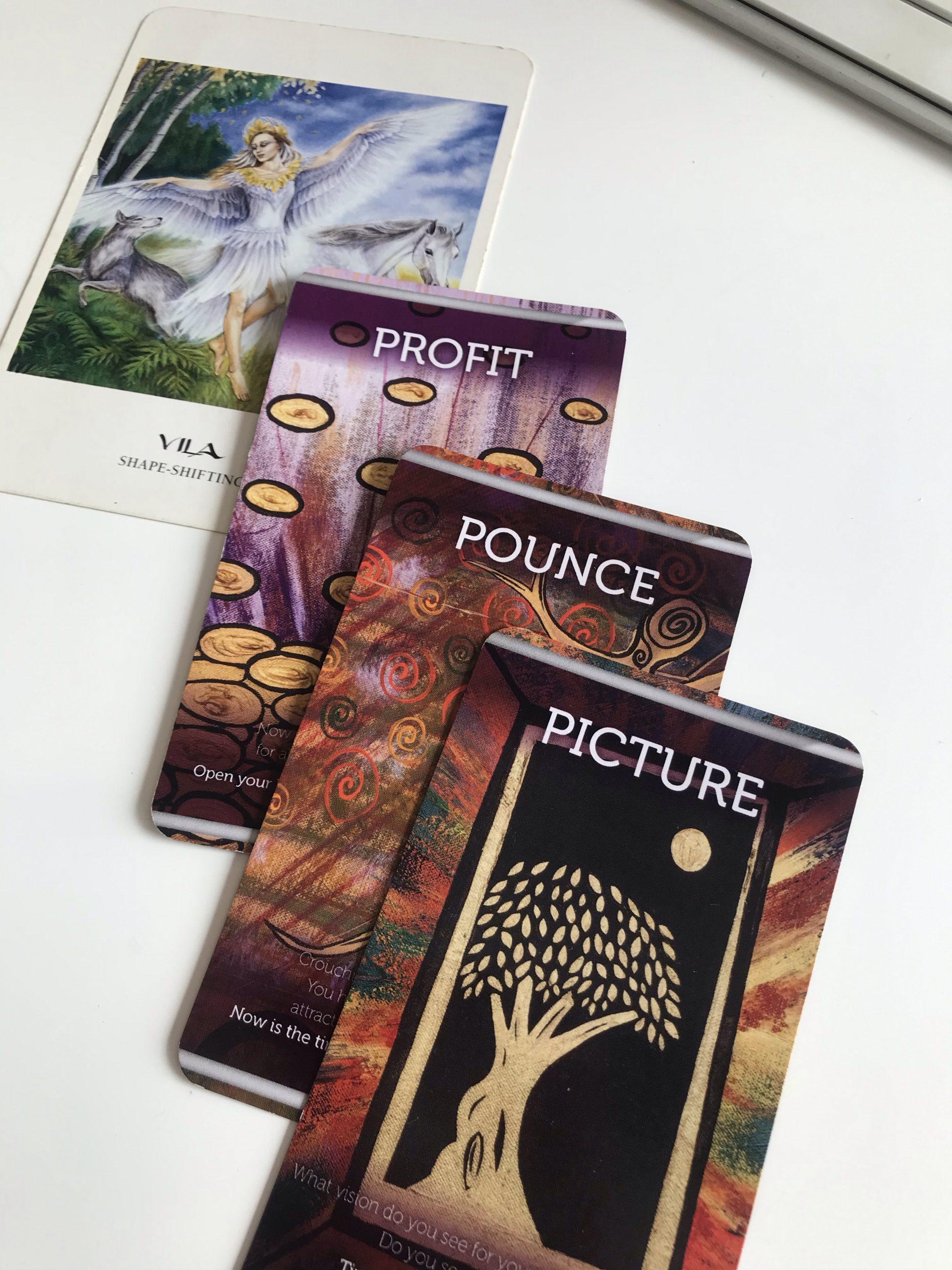 Profit, Pounce & Picture