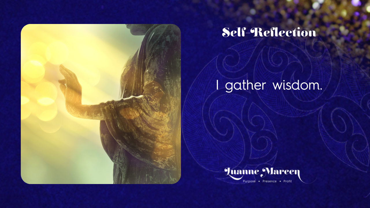 Read more about the article Self-Reflections: I gather wisdom.
